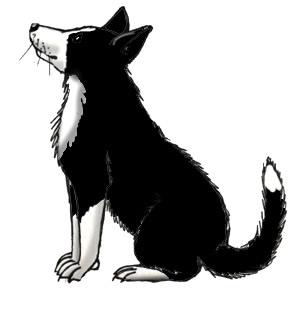 Border Collie clipart Dog Clip Collie) Clip Dog