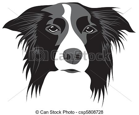 Border Collie clipart black and white 697 collie collie Images Border