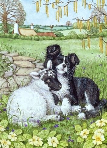 Border Collie clipart farm dog This on artwork more best