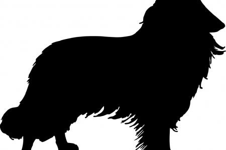 Border Collie clipart silhouette Clip UK Border Dog Silhouette
