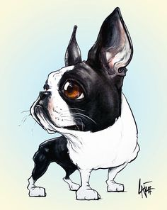 Boston Terrier clipart anime boston Boston Terrier Terrier on Boston