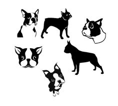 Boston Terrier clipart black and white DXF Cut File vector