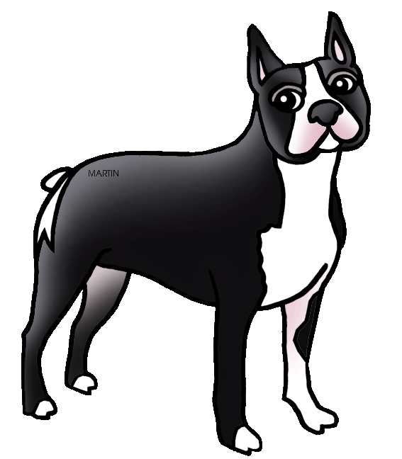 Boston Terrier clipart black and white Terrier United States Art State
