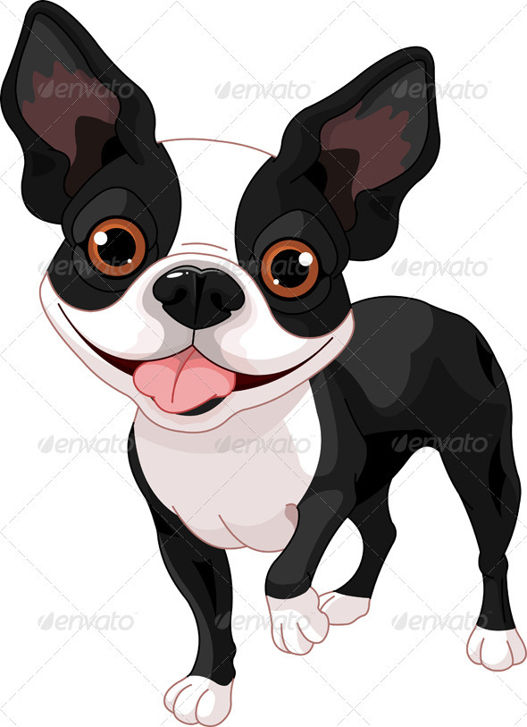 Boston Terrier clipart cute baby Boston Boston Terrier Terrier Terrier