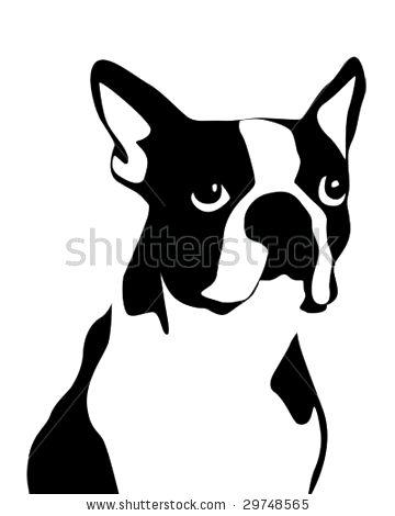 Boston Terrier clipart face Face Terrier Face Happy Heaven
