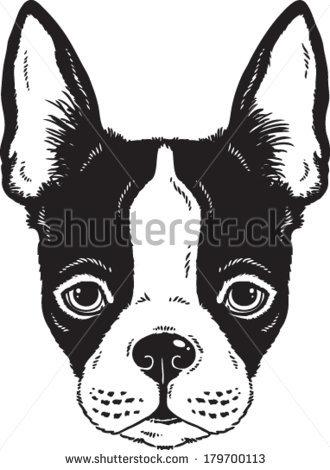 Boston Terrier clipart face Black Sketches ideas vector face