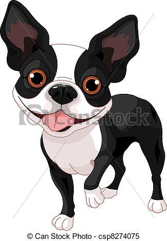 Boston Terrier clipart face Csp8274075 of  in Boston
