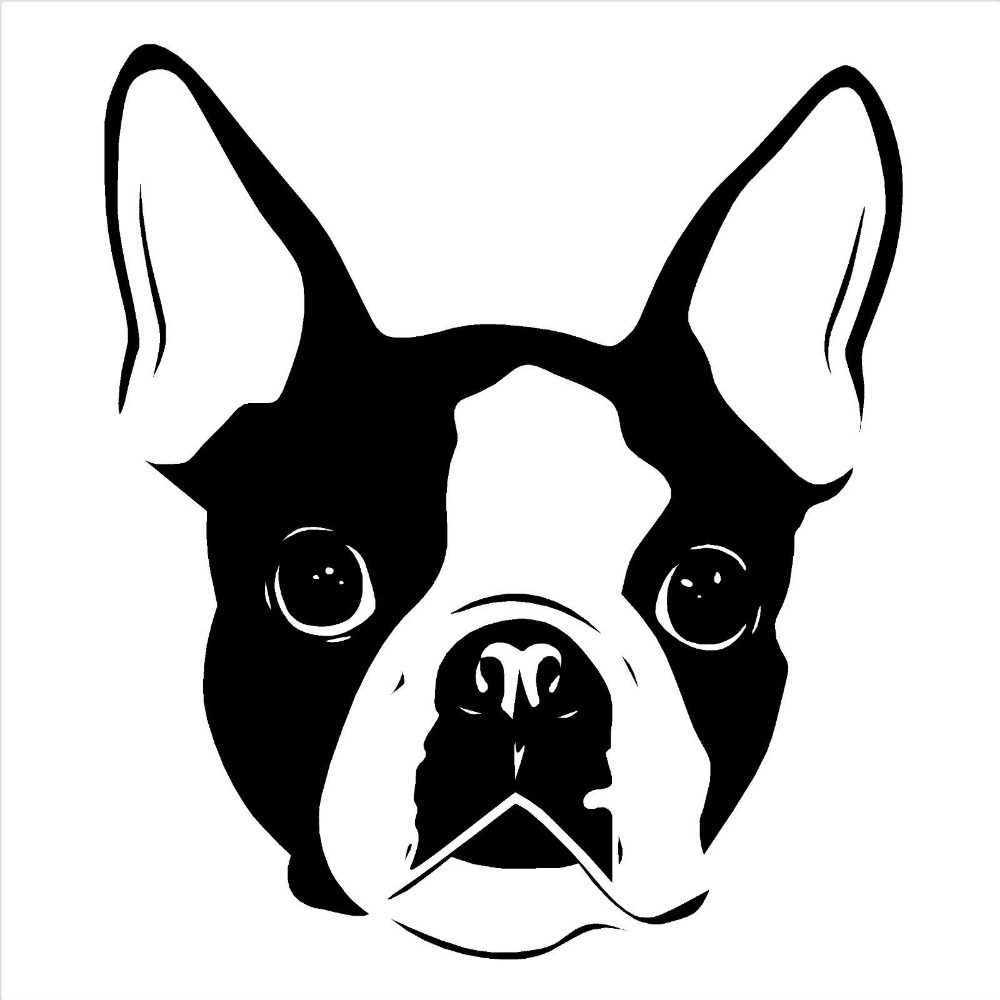 Boston Terrier clipart face Wall Cheap Boston Bedroom decal