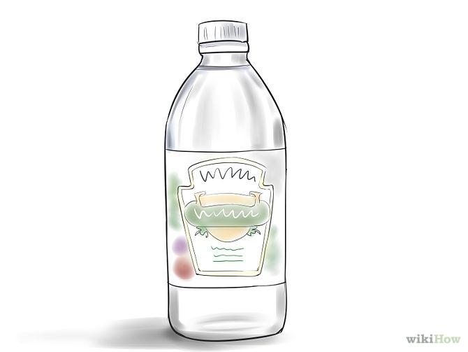Bottle clipart vinegar Vinegar Vinegar Art Bottle Zone
