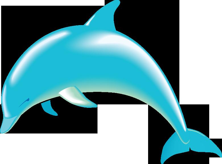Bottlenose Dolphin clipart  animals DownloadClipart animals dolphin