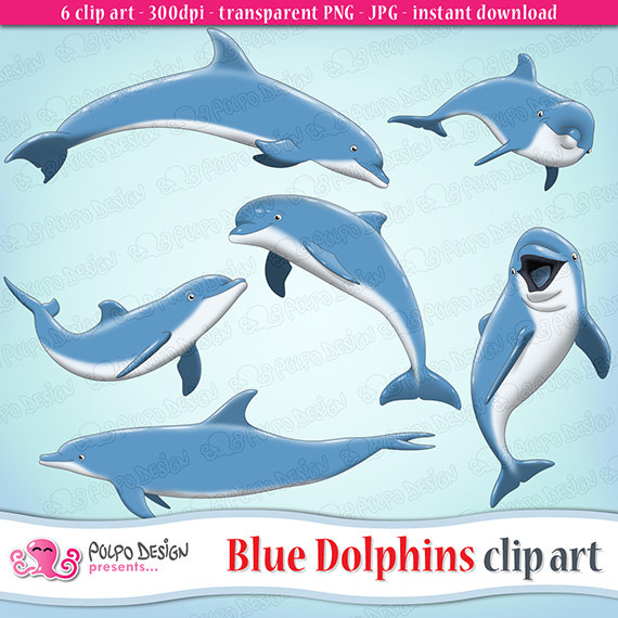 Bottlenose Dolphin clipart blue thing Item? Dolphins Blue clipart art