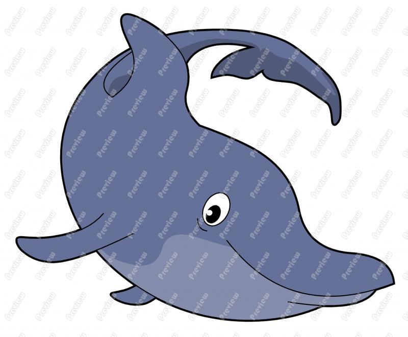 Bottlenose Dolphin clipart cartoon Art Art Dolphin Dolphin Bottlenose