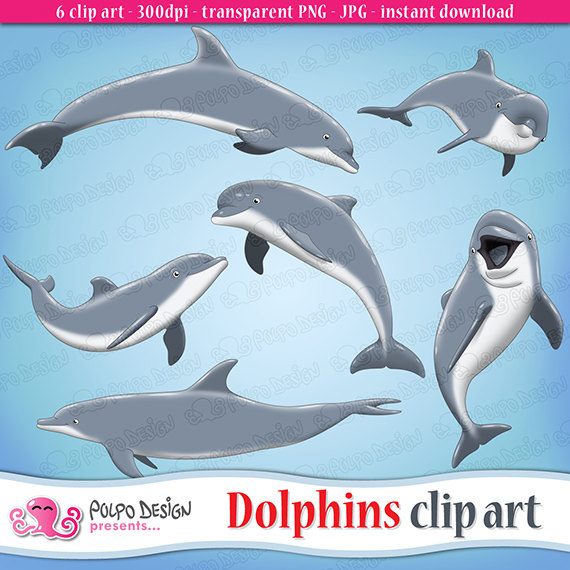 Bottlenose Dolphin clipart creature Art animal from Use PolpoDesign