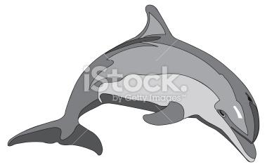 Bottlenose Dolphin clipart illustration Clipart Free Bottlenose bottlenose%20dolphin%20clipart Images