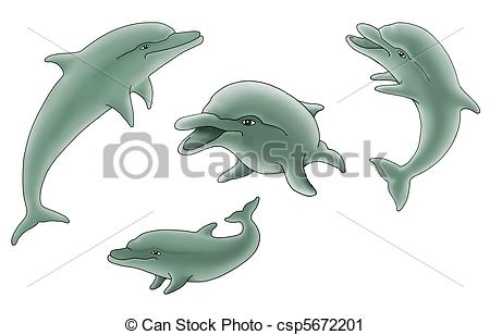 Bottlenose Dolphin clipart nosed 4 isolated bottle Clipart background
