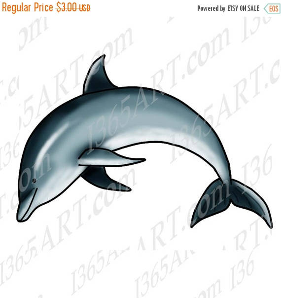 Bottlenose Dolphin clipart ocean animal Animal 50% Digital Jumping Ocean