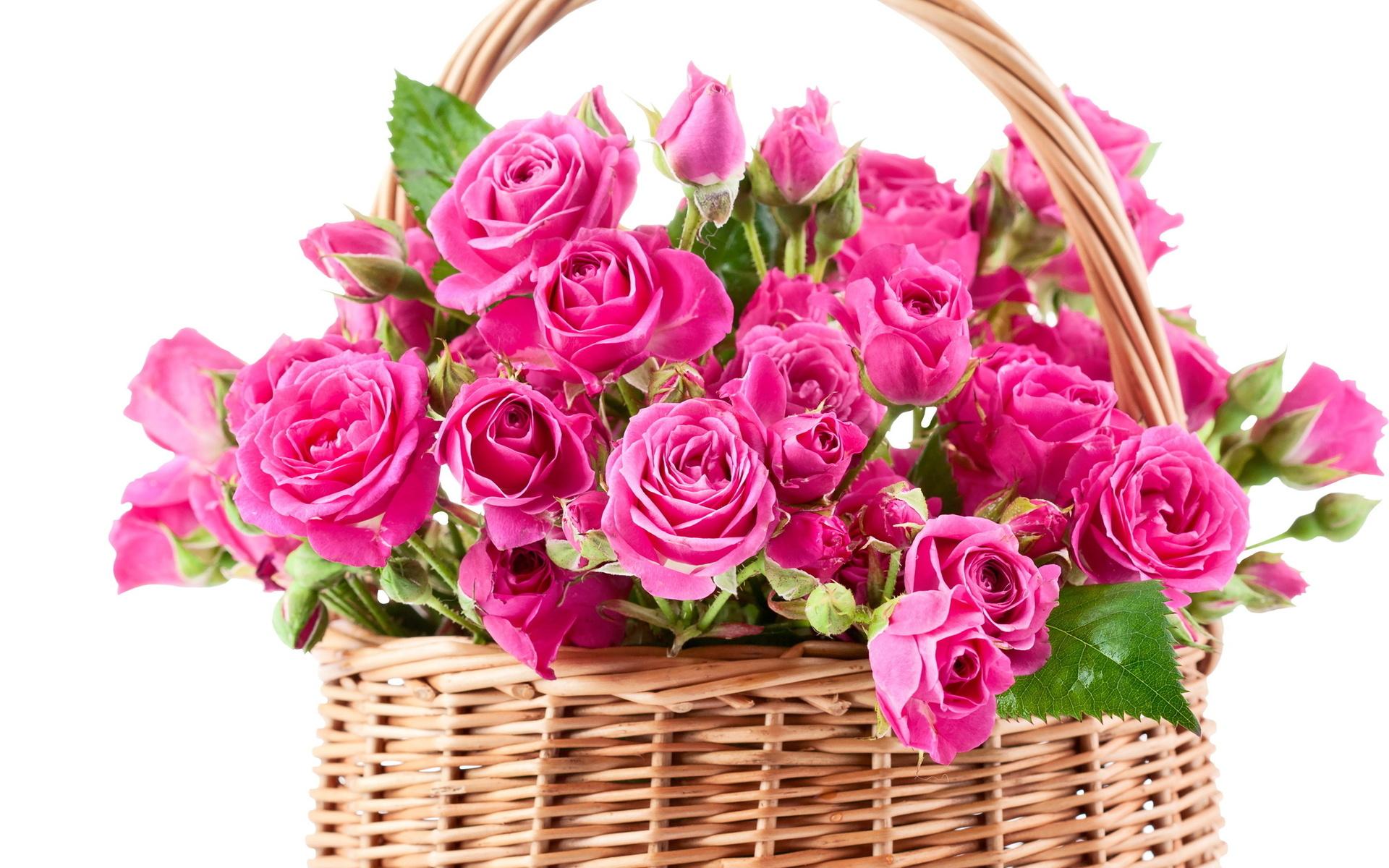 Bouquet clipart beautiful flower For Bokeh Wallpapers  Dudaite
