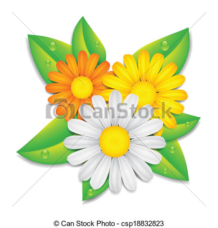 Chamomile clipart flower bunch  of flowers Vector flowers