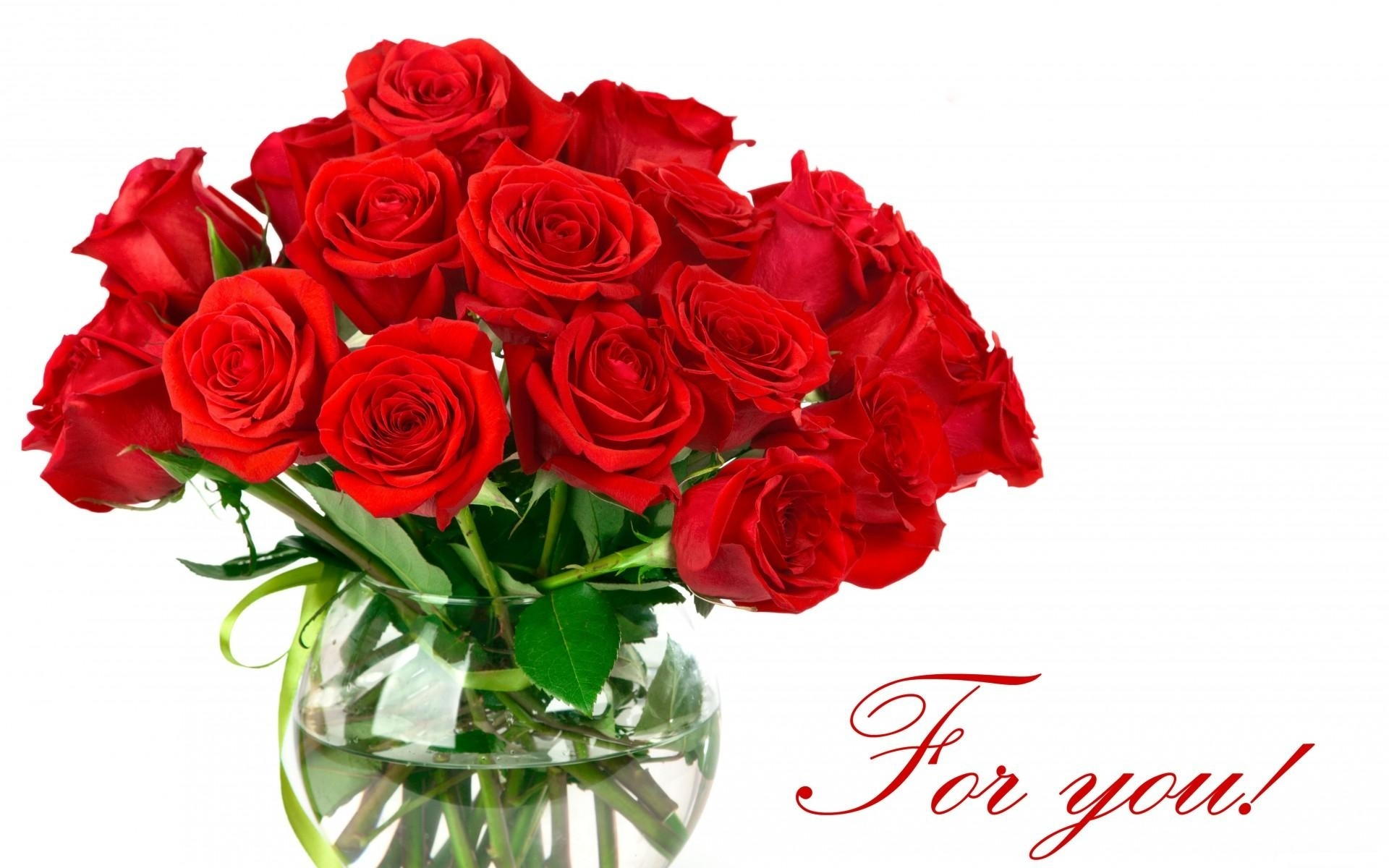 Red Rose clipart bright red #4