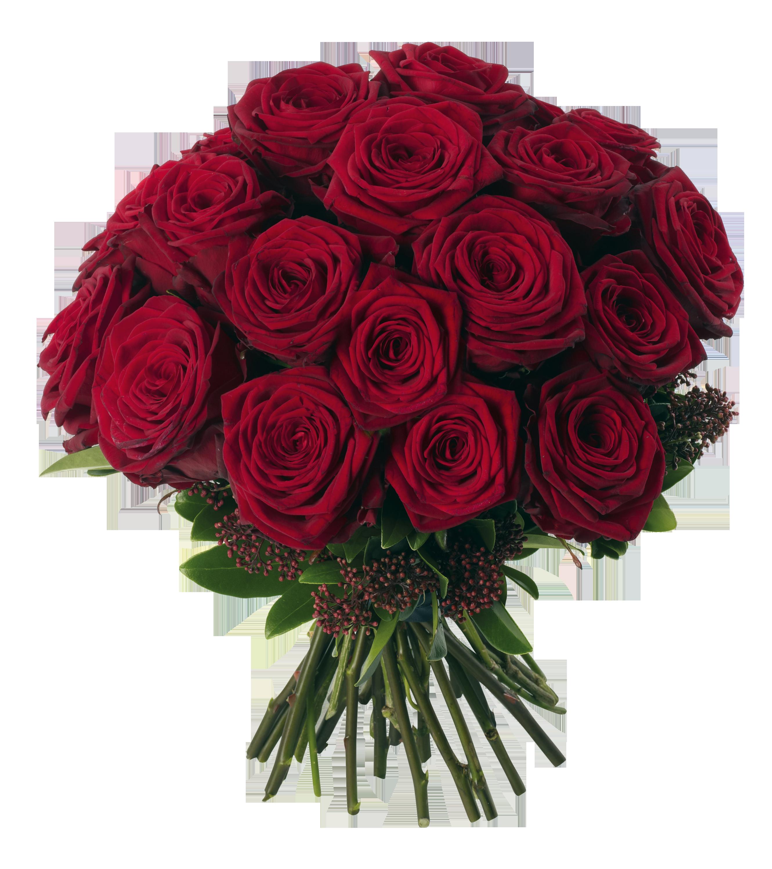 Bouquet clipart dozen rose Roses PNG Red clip Bouquet