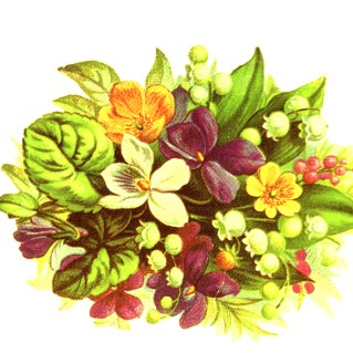 Bouquet clipart may 2015 Leaves domain public Illustrations Floral