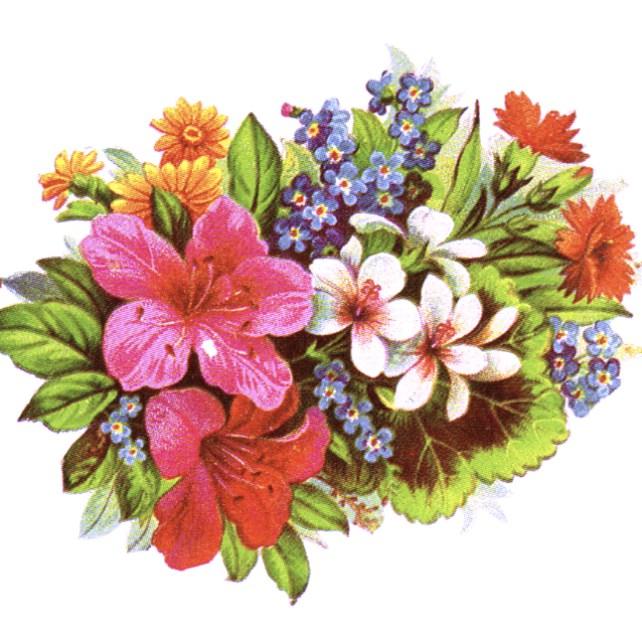 Bouquet clipart may 2015 Bouquet domain public Illustrations Floral