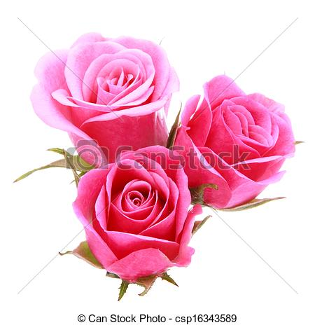 Bouquet clipart pink rose bouquet Csp16343589 flower white Pink rose
