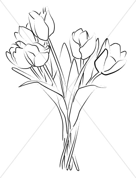 Drawn bouquet tulip bouquet Sketch Bouquet Tulip Sketch Tulip