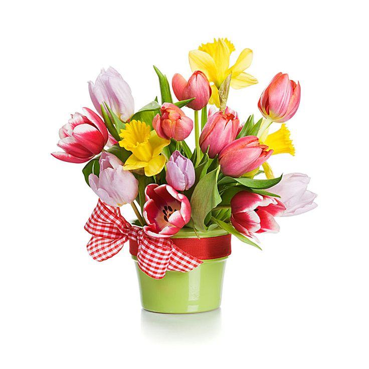 Bouquet clipart spring flower bouquet 892 Containers Pinterest on 美丽郁金香花盆