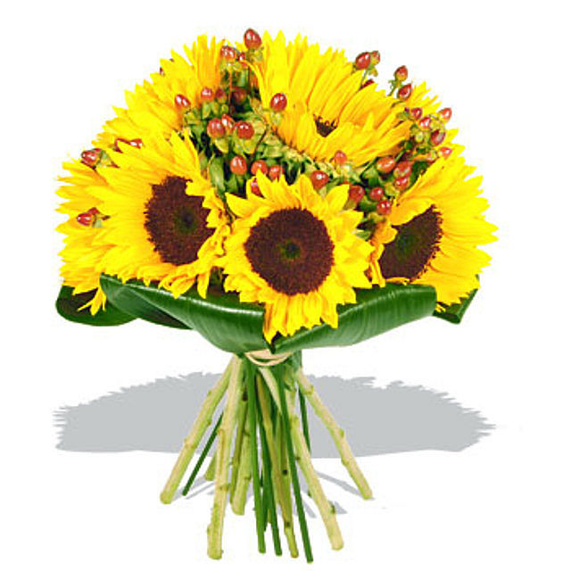 Bouquet clipart sunflower bouquet Hotel The Berries with Plaza