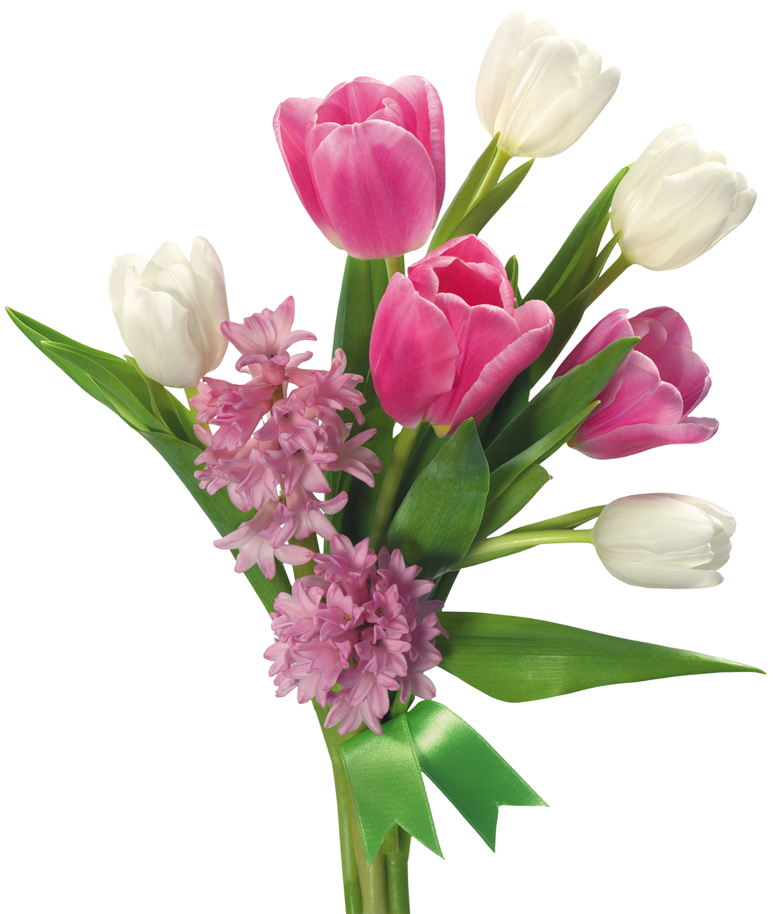 Beautiful clipart flower bokeh Tulips Hyacinths  PNG flowers