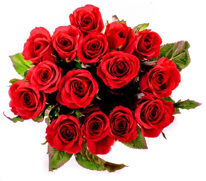 Rose clipart valentine rose #11