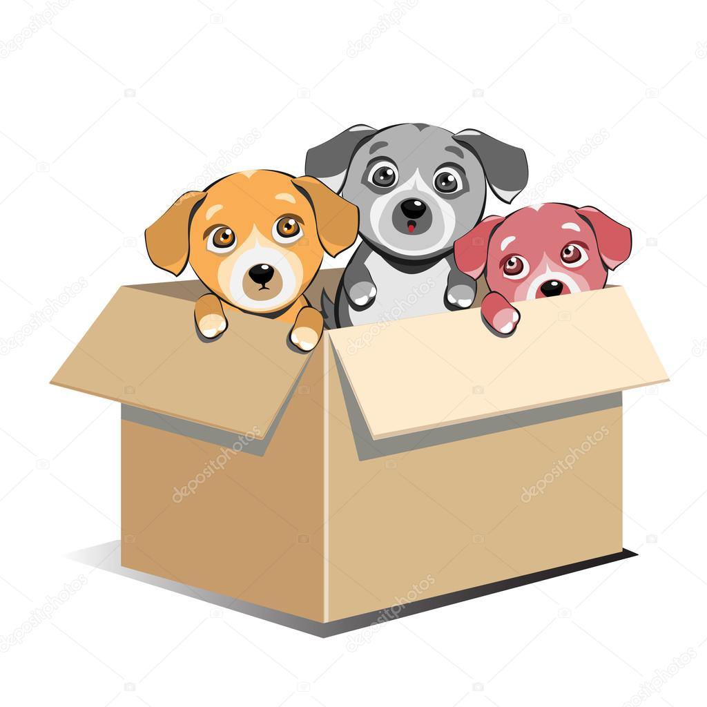 Box clipart puppy Vector adoption — Abandoned box