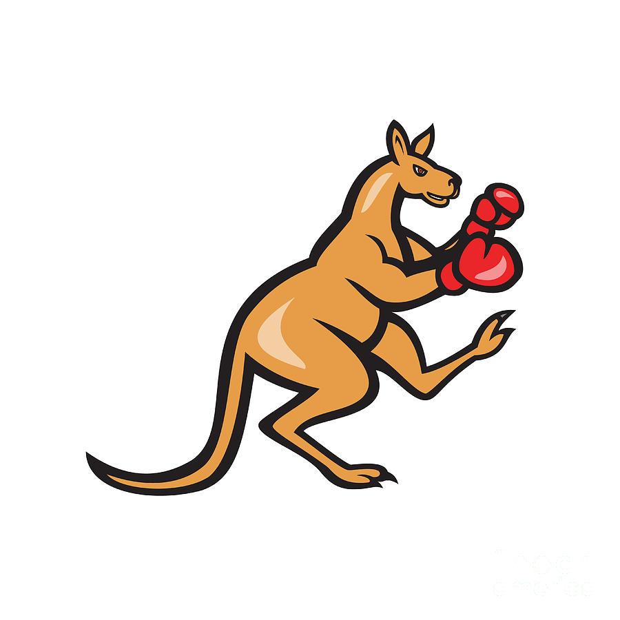 Boxer clipart kangaroo Boxing Cartoon Kangaroo photo#5 kangaroo