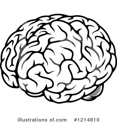 Brains clipart brain thinking Illustration Tradition Royalty Clipart Free