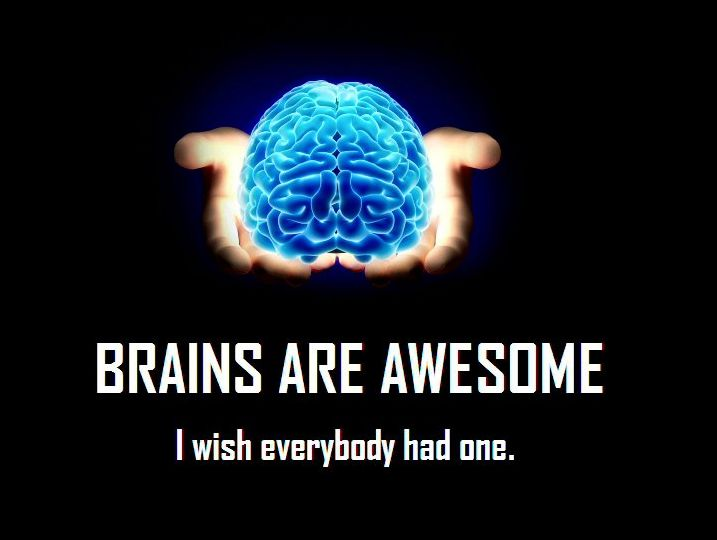 Brains clipart brain overload Overload  best Info Useless