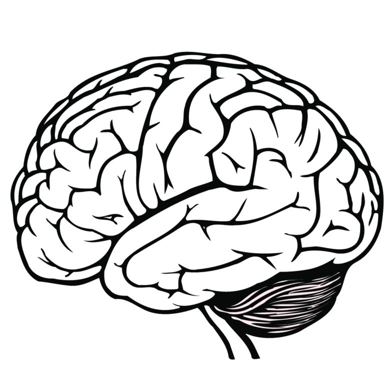 Brains clipart brain thinking  Storm 15 images best