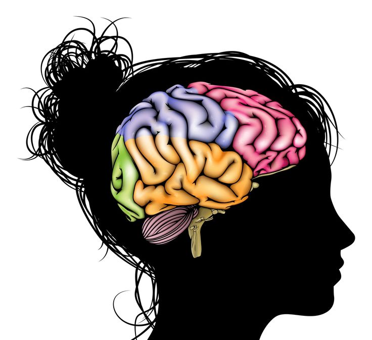 Brains clipart counsellor On best 118 ~Counselling ~