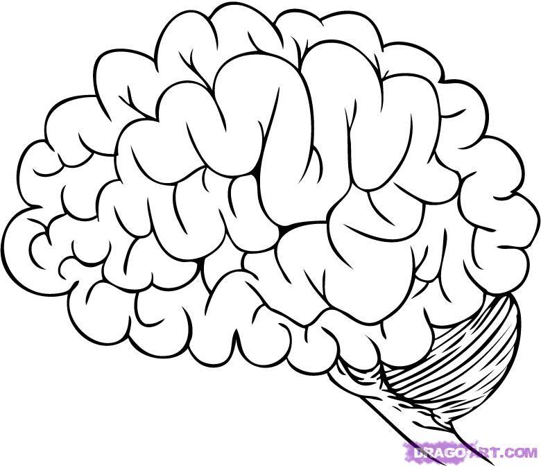Drawn brains graffiti Photos FREE Clip Step How