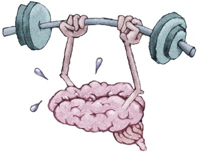 Brains clipart excercise #14