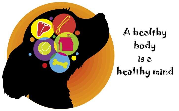 Brains clipart healthy mind Mind Brain Dog Foods your