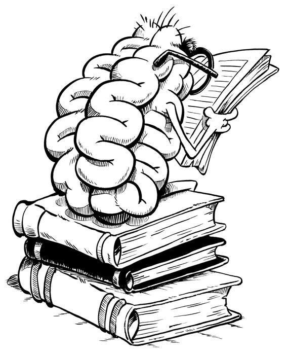 Brains clipart importance #11