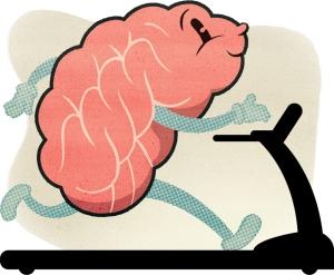 Brains clipart importance #14