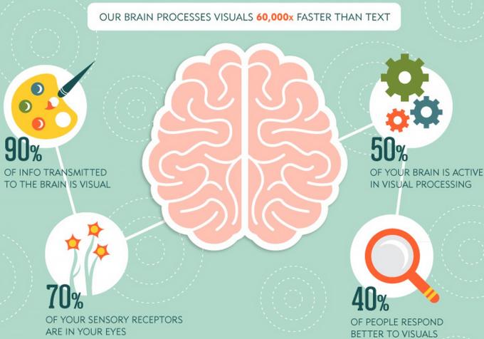 Brains clipart importance #7