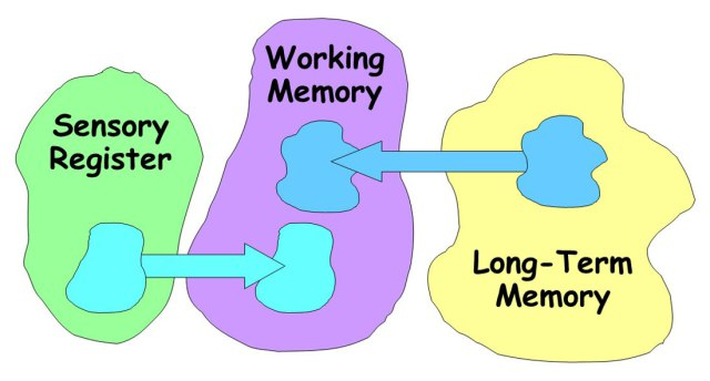 Brains clipart long term memory Fundamentals your Piano ology piano
