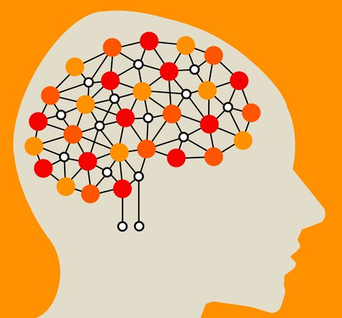Brains clipart long term memory Memory  Problems in Long