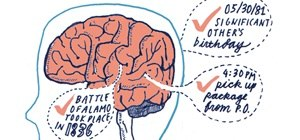 Brains clipart memory For Improving Your  for