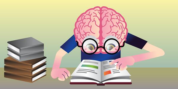 Brains clipart mind reading You Brain Scientific American Network
