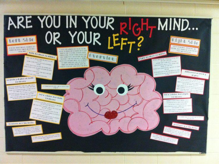 Brains clipart project idea psychology Girararaffe: between bulletin qualities Brain
