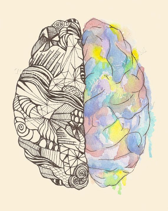 Drawn rabbit fluffy bunny Hemispheres Art Science Print Neurology